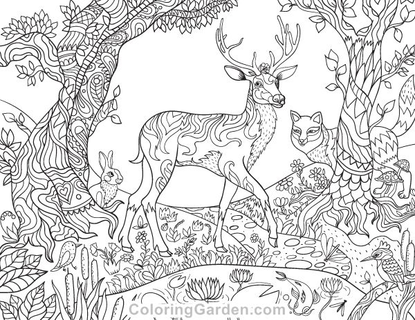 2867 Best Adult Coloring Therapy Free Amp Inexpensive
