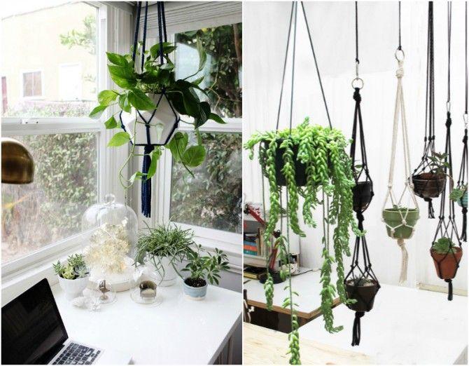 Plantas colgantes salon buscar con google inspiraci n for Maceteros para salon