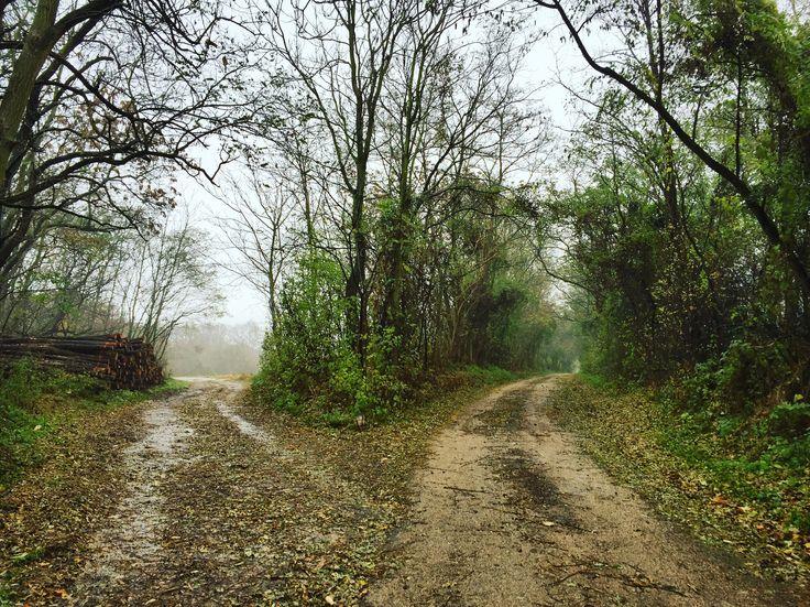🇬🇧good morning world. Which road is the best? All of them.  But not all the roads gonna work for us. --> No words, but work 💪  🇸🇰dobré ráno. Ktorá cesta je najlepšia? Všetky sú dobré. No nie všetky budú budú správne pre nás. --> žiadne kecy, ale práca 💪