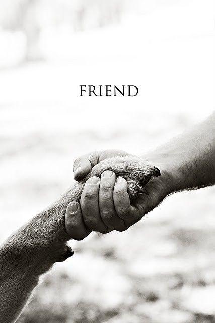 """""""Best"""" Friend :-)"""