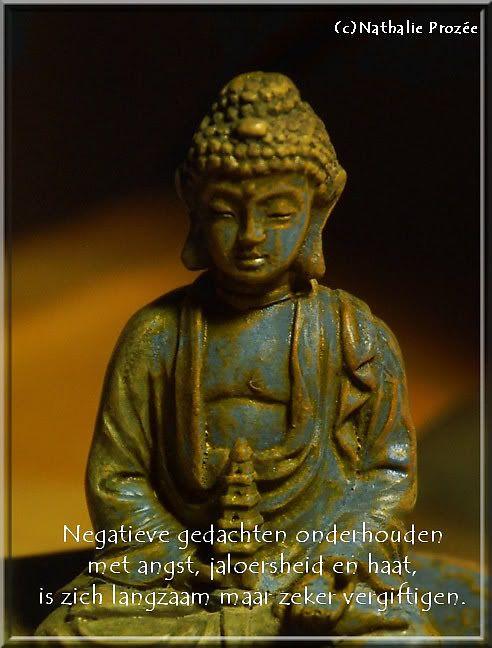 Citaten Boeddha : Spreuk boeddha spreuken wijze woorden en