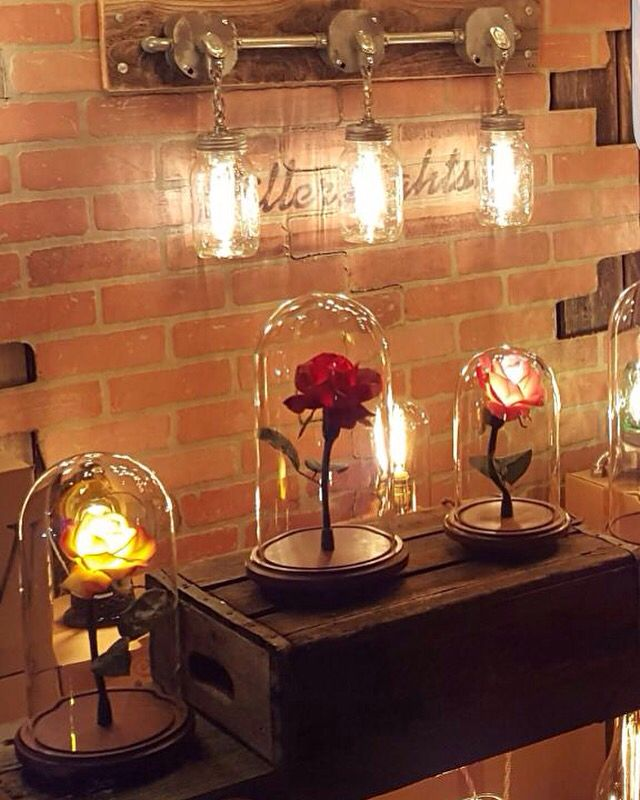 Industrial Light And Magic Gold Coast: 25+ Best Ideas About Enchanted Rose On Pinterest
