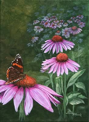 Painted Lady and coneflowers by Shirley Reade