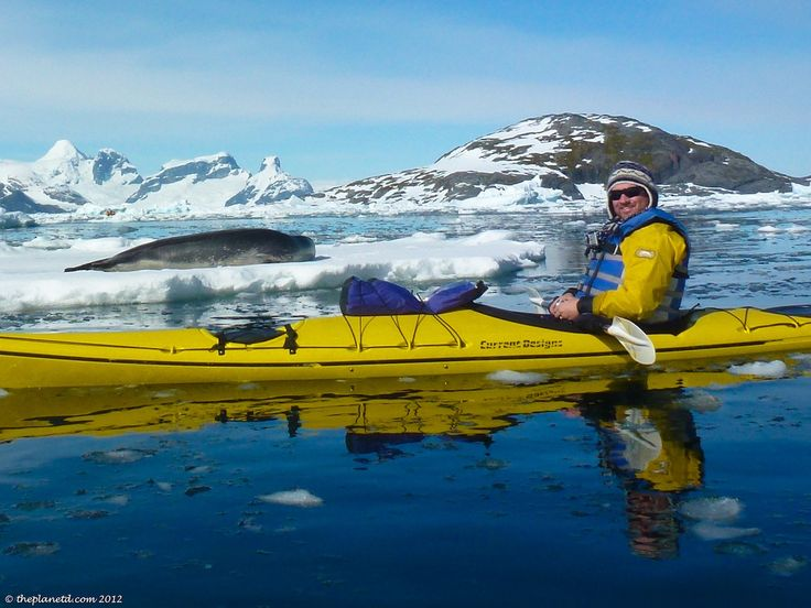 Best Travel Antartica Images On Pinterest Adventure Trips - 12 things to see and do in antarctica
