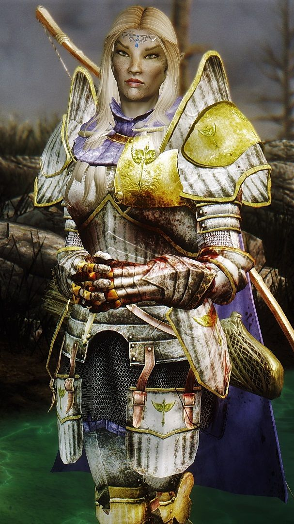 Immersive Armors at Skyrim Nexus - mods and community in