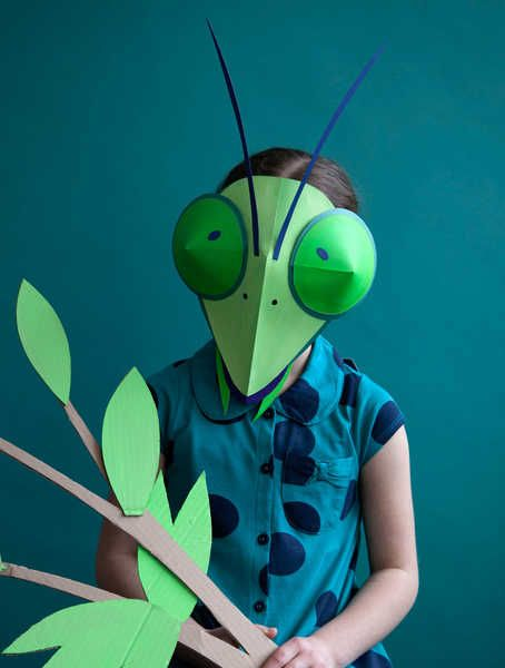 Hattie newman Ivy Press Zoo Faces Preying Mantis