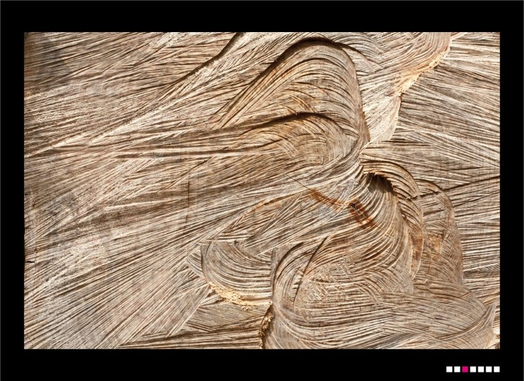 Wood n° 1  Foto di Costanza Mansueti, 2012 $48.00
