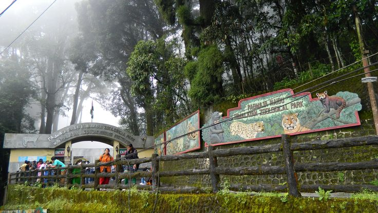 Zoological Park ... Named After Padmaja Naidu (Daughter of Sarojini Naidu)... Largest High altitude zoo in India... #zoo #park #sarojini #naidu #padmaja #largest #Darjeeling #India #HolidayPlans