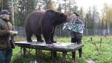 Sulo Karjalainen (vas.), Juuso ja Pasi Jäntti ovat vanhoja ystäviä, joten luovuus pyrskähteli iloisissa merkeissä.