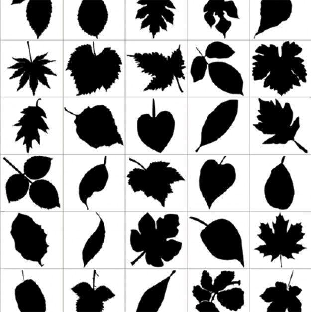 siluetas de hojas y, libre de gráficos de vectores