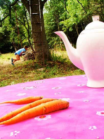 www.jedziemynawies.blogspot.com