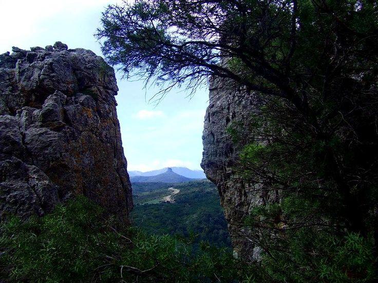 Sardegna-Perda Liana vista dalla sommità dei Tacchi di Gairo Taquisara. Foto di Francesca Sedda Bianchi.
