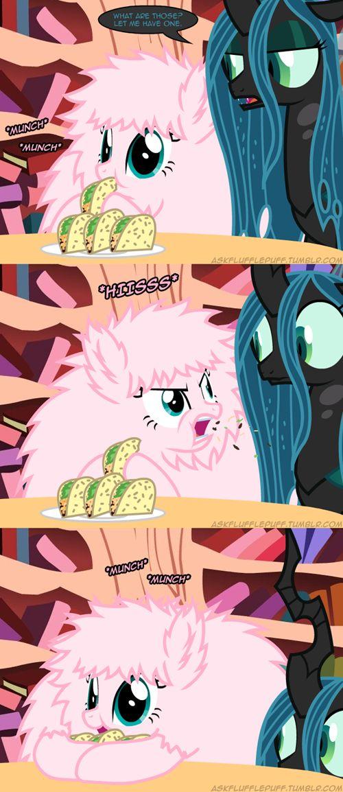 My Little Brony - Brony Memes and Pony Lols - my little pony, friendship is magic, brony - CheezburgerPuff Tacos, Mr. Tacos, Flufflepuff Ness, Food, Ponies, Abbie Mlp, Friendship, Fluffy Puff, Fluffle Puff