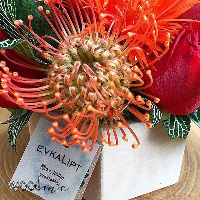 Добавим немножко ярких красок вам в ленту🌹  Букет от @ev_kalipt в кашпо от WoodMe - неповторимый, запоминающийся и очень полезный подарок, ведь кашпо можно использовать не только для цветов, но и для разных полезных мелочей😉  .  .  .  .  #woodme #кашпо #деревянное_кашпо #кашпо_из_дерева #деревянныйдекор #заготовкаиздерева #заготовкадлядекупажа #букет #цветы