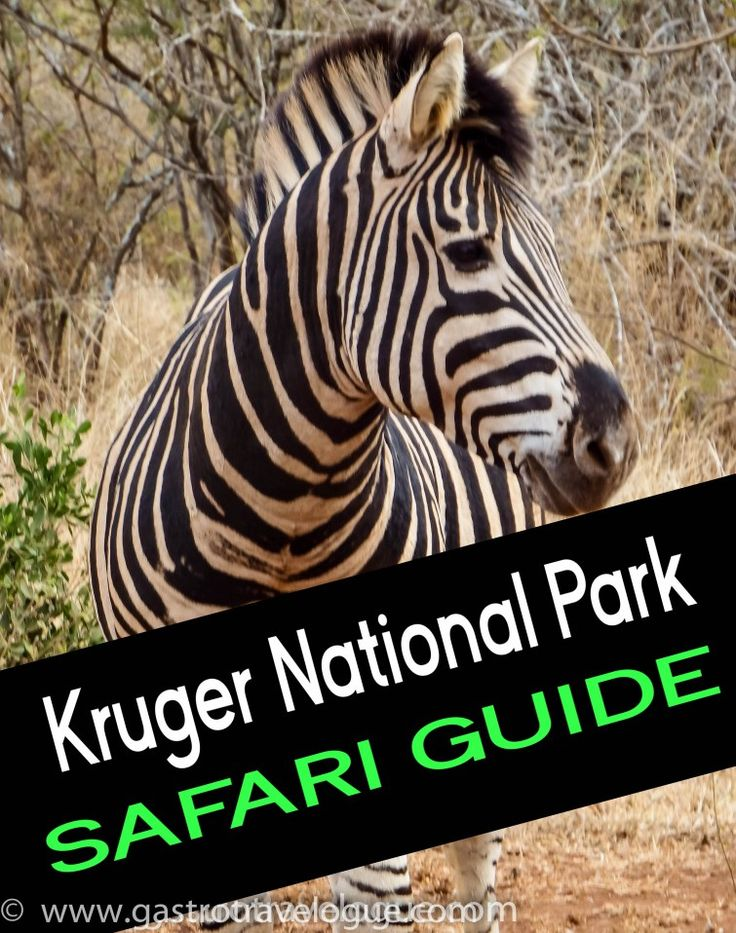 Kruger National Park Ultimate Safari Guide- Insider information - 16 Tips to make the most of your holiday