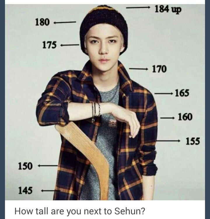 Lol I literally only reach upto his waist why this giant makes me feel so small #Sehun #EXO #EXO-K