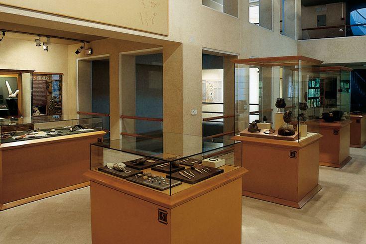 Estas colecciones y el edificio que las custodia merecieron en 1962 la declaración de Monumento de Interés Artístico Nacional.