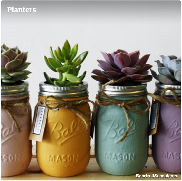 Succulents in mason jars...