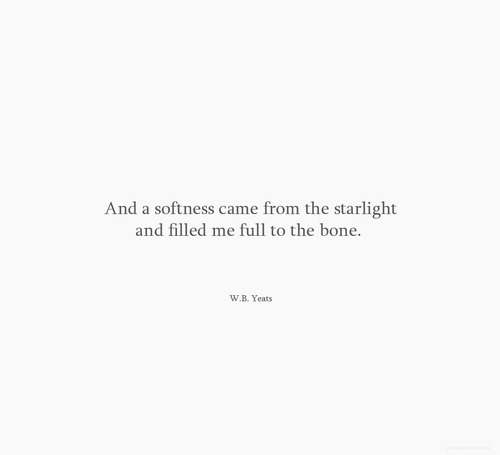 and the softness became starlight and filled me full to the bone..Yeats'