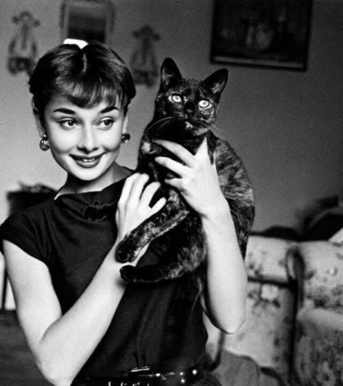 Audrey Hepburn with her black kitty, just like Louis XIV