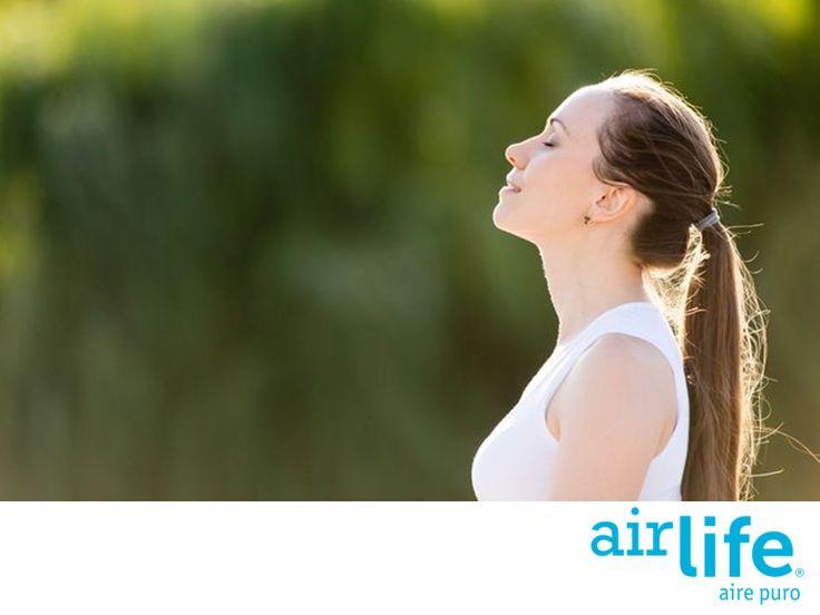 LAS MEJORES SOLUCIONES EN PURIFICACIÓN DEL AIRE. El aire es un elemento que libre de sustancias contaminantes y toxinas en el ambiente, se le puede considerar como puro. Respirarlo, estimula a tu sistema inmunológico reduciendo los síntomas de alergias y afecciones respiratorias o asmáticas. En Airlife, te invitamos a conocer nuestros servicios en purificación del aire, ingresa a www.airlife.com. #airlife