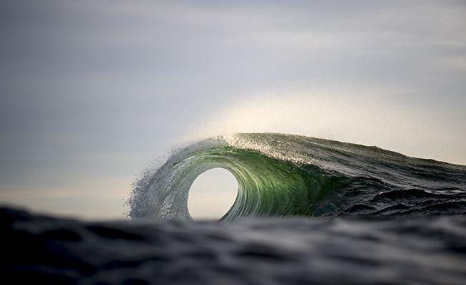 Portal - Ray Collins