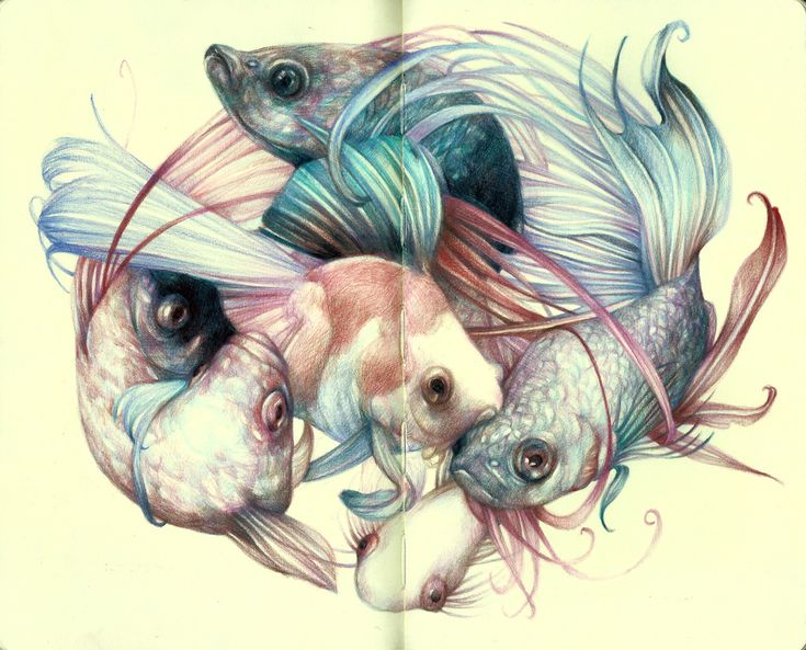 """The Fishcloud"" 2012, colored pencils and ink on moleskine paper, cm 21x26"