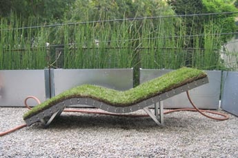 Horsetail reed galvanised steel planters
