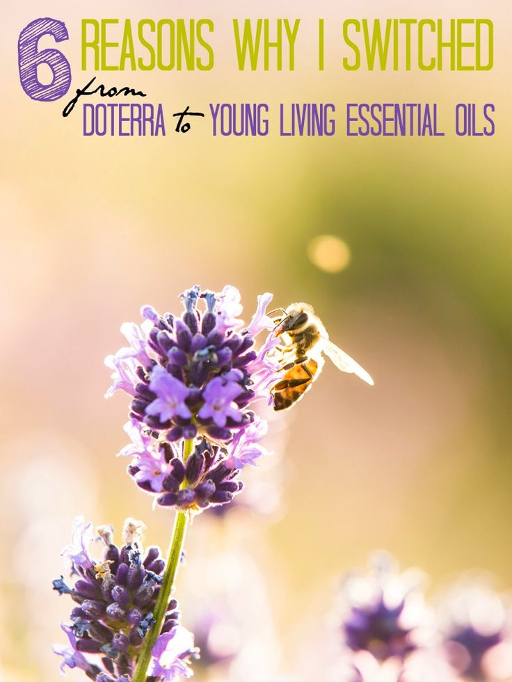 Trying to choose Young Living vs doTERRA? These 6 reasons may help you make up your mind which essential oil company is right for you.