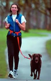 Running with dogs - Google Search
