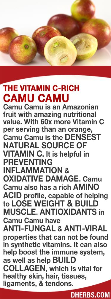 Camu Camu is an Amazonian fruit with high nutritional value. With 60x more Vitamin C per serving than an orange, it's the DENSEST NATURAL SOURCE OF VITAMIN C. It can help PREVENT INFLAMMATION & OXIDATIVE DAMAGE. It also has a rich AMINO ACID profile, help