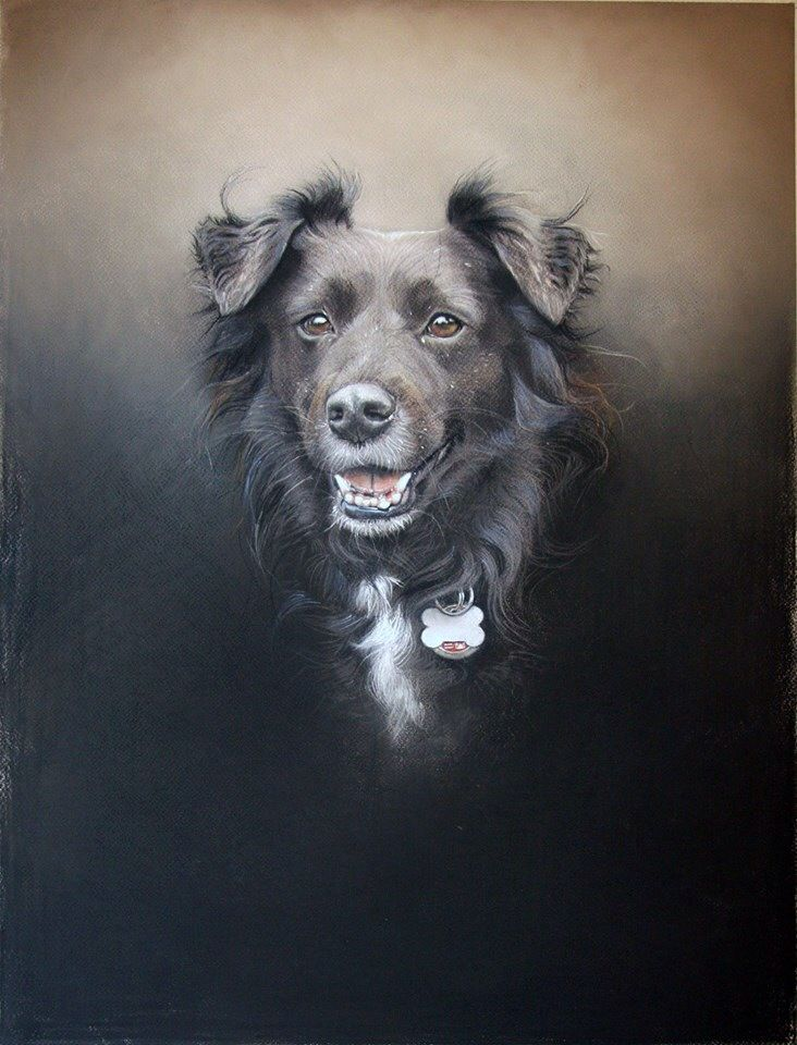 """""""Mela"""" chalk pastel by Amy Little, contemporary London-based artist who creates portraits of rescue & shelter dogs"""