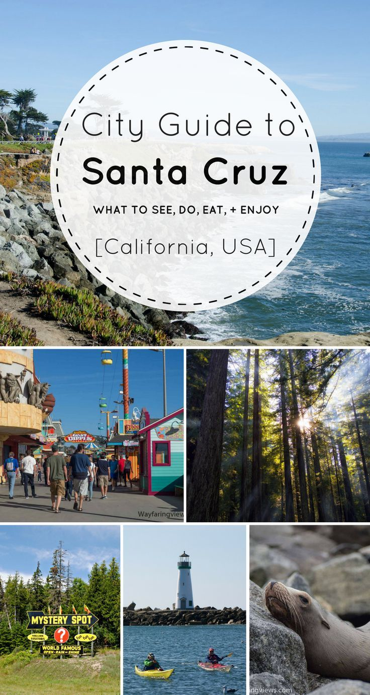 things to do in santa cruz: what to see, do, eat, + enjoy