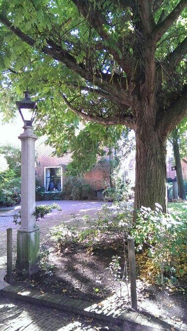 Haarlem, the Netherlands,  Hofje zonder zorgen - my second home