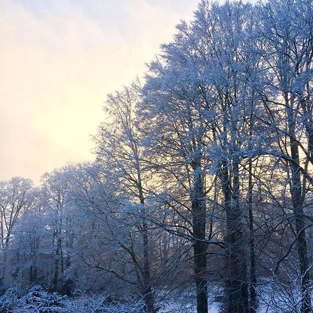 Sonnig kalte aber verschneit schöne #Momente aus #bayern. Der Anblick Weck Lust auf #winter #Weihnachtsmarkt #wellness #wohlbefinden #wochenende #weloveshopping #wellspatravel #weather #wonderful und die Frage welche WWW ich nach vergessen habe?