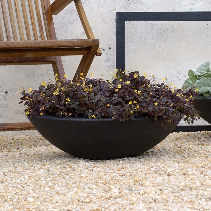 Lovely Zen Low Bowl Polyethylene Planters In Black
