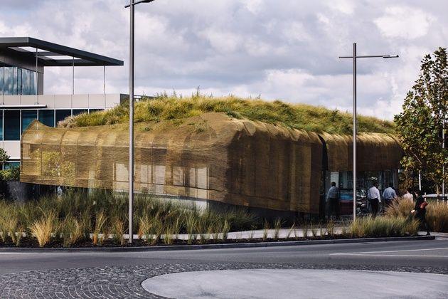 Cobertura verde - aeroporto da  Nova Zelândia e design maori