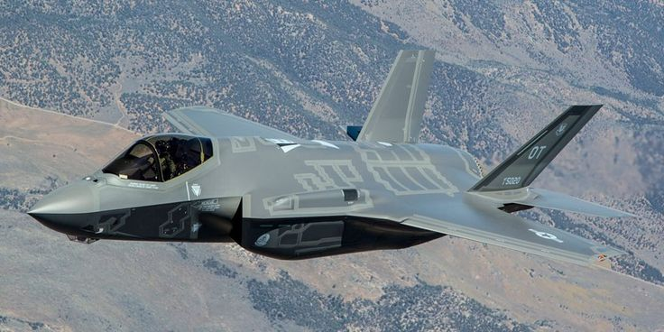 Zwei Störche gegen den 110-Millionen-Dollar teuren US-Super-Stealth-Kampfjet F-35. Die Vögel gewinnen!