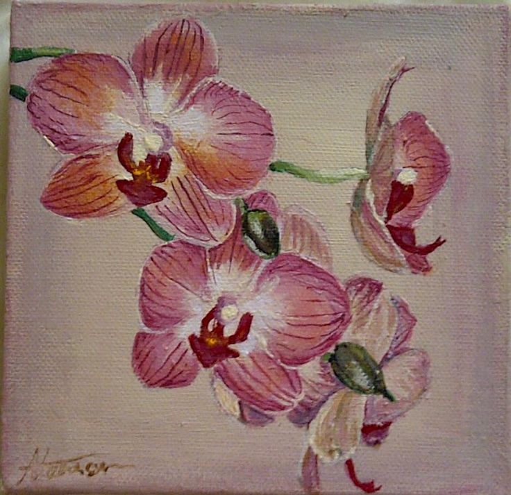 Orchid Painting 15x15 cm Acrylic on Canvas