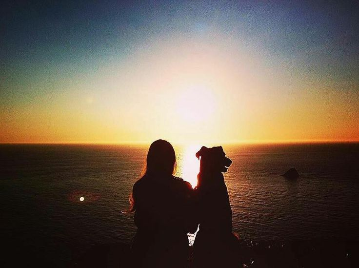 Il tramonto è passato da un pezzo ma le foto di @clydetherapy ci emozionano sempre tantissimo.  100 km di cammino fino alla fine della terra!  #clydetherapy #clyde #pettherapy #pettherapydog #dogoftheday #instatravel #tramonti #doggy #bausocial #malinoislove #malinoislovers #vitadacani #wilddog #wanderlust #ilmiocane #cane #dog  #amazing #belgianmalinois #pastorebelga #pastorebelgamalinois #instatravel #doglovers #love #esploratore #globetrotter #travelpics #landscape  #dogsonadventures