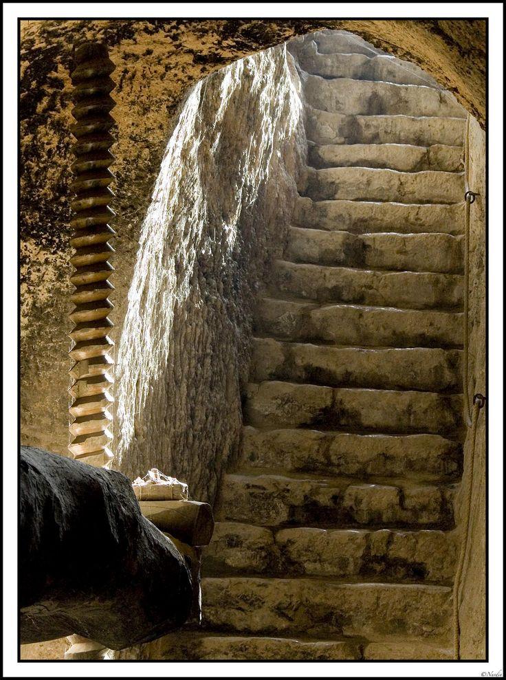 Lagar Tradicional de prensa de vinos claretes de Cigales, vista del Husillo y escalera de acceso.