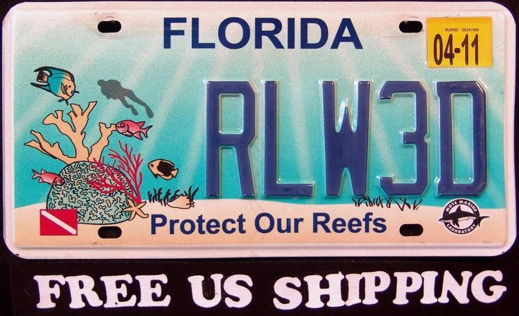 24 best license plates images on pinterest licence for Free fishing license florida