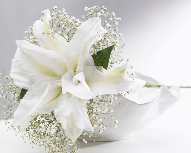 Roselilies have a subtle fragrance and produce no pollen. Perfect for including in romantic and festive table arrangements, bridal bouquets and corsages. http://www.roselily.com/