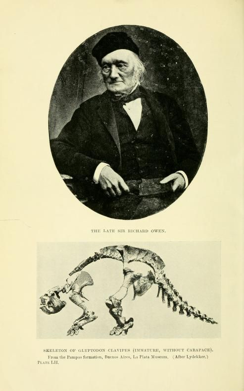 Extinct monsters and creatures of other days : - Biodiversity Heritage Library