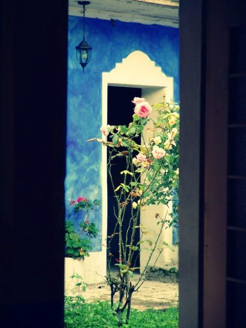 El Jardin de La Casa