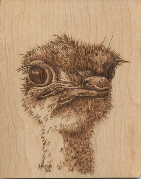 Best images about woodburning pyrography on pinterest