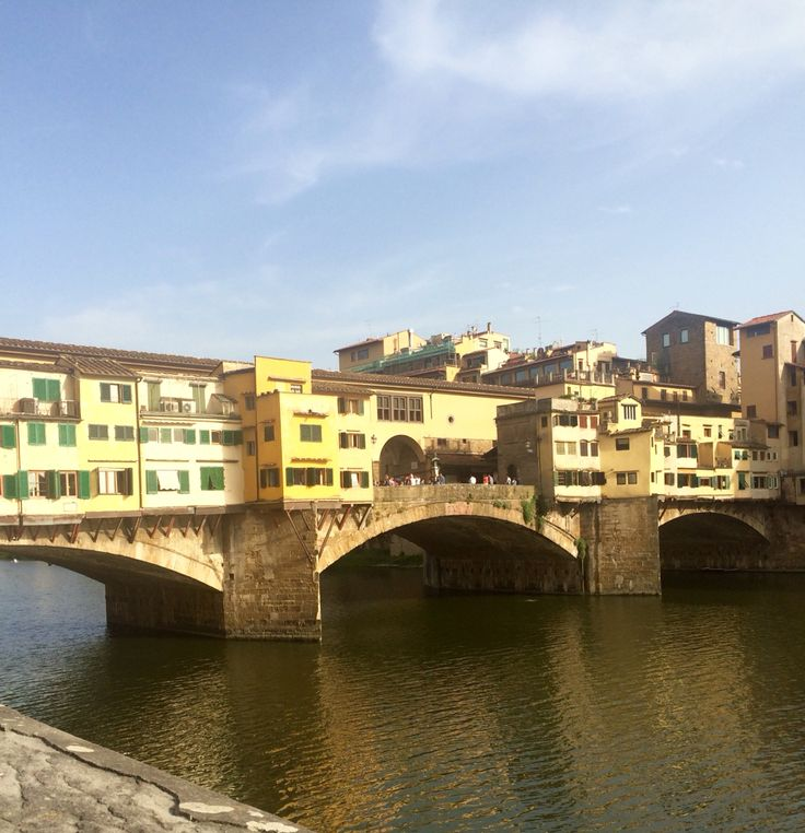 #riverarno #pontevecchia #firenze #florence #tuscany
