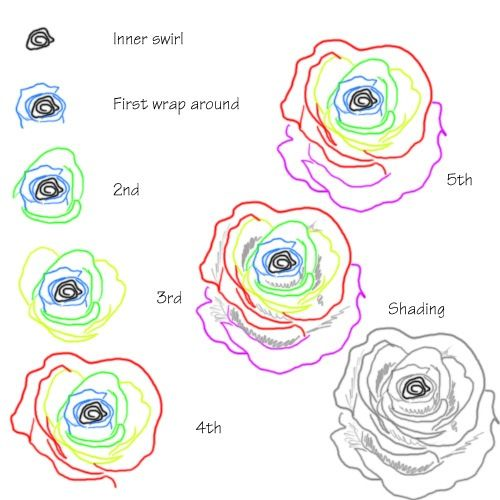 How to Draw a Rose Using Squiggly Lines. Have fun drawing from these 50 selected rose drawing tutorials. Each how to draw a rose tutorial has easy step by step instructions or a video tutorial. #drawing #tutorial #rose See more at https://easydrawingguides.com/how-to-draw-roses-50-best-tutorials/.