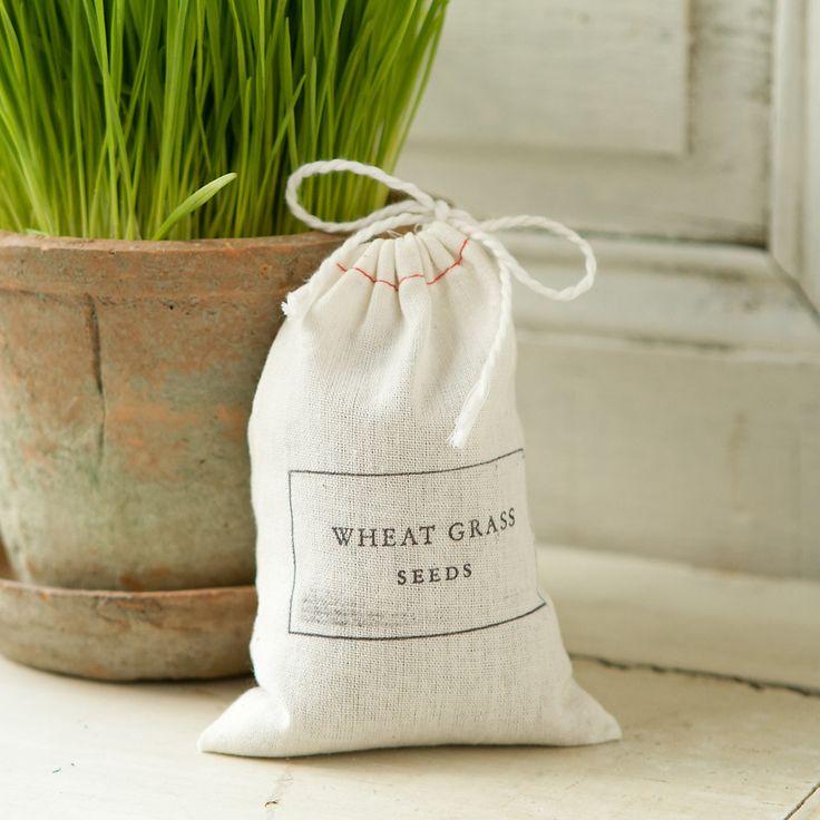 Terrain Wheatgrass Seed #shopterrain