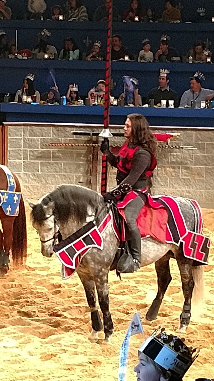 1/16/17 UPDATE FROM MEDIEVAL TIMES: Click on this link to find educational matinee pricing and special benefits to the homeschool audience! Medieval Times messaged me privately to let usknow about...